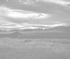 montana-social-impacts